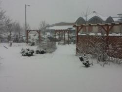 Winterpaket, Sarvar